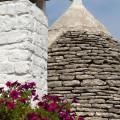 Alberobello: trulli
