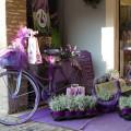 Sirmione: levandulový obchod na Via Vittorio Emanuele