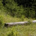 Krušné hory, zrušená trať Křimov - Marienberg: pozůstatky železnice