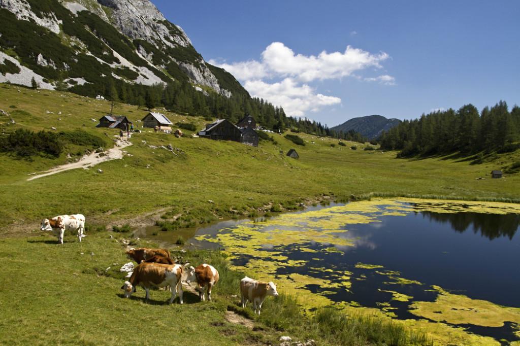 Rakousko: Tauplitzalm