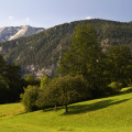 Sengsengebirge a louky u Windischgarstenu