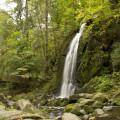 Novohradské hory: Vodopád v Terčině údolí