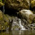 Madeira: zdrojnice levady pod Feiteiras de Baixo