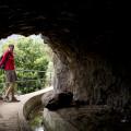 Madeira: tunel na levadě