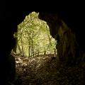 Tunel na stezce u Svatojánských proudů