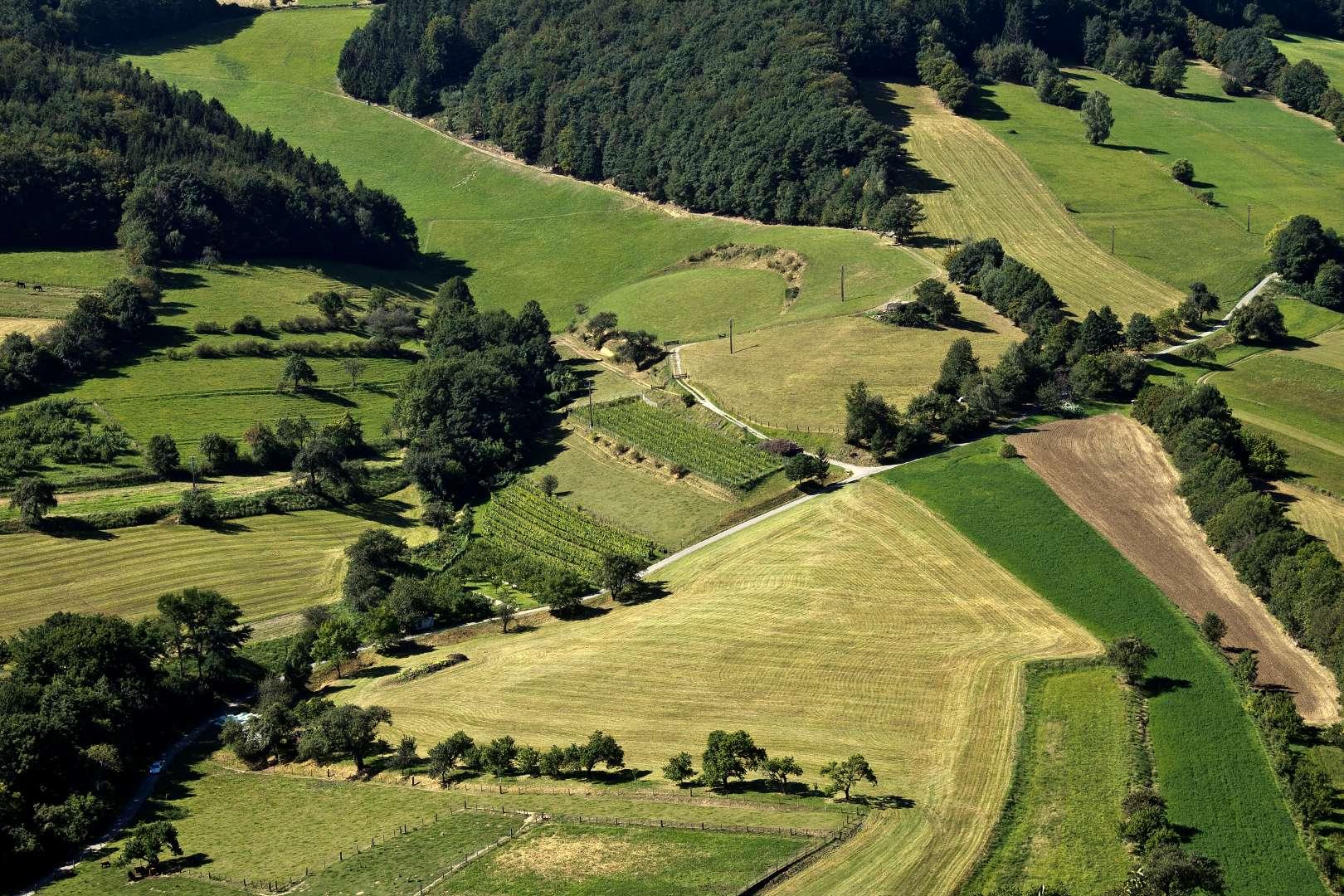 Wachau: Spitzer Graben